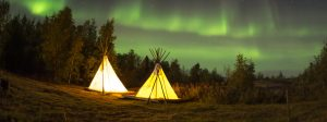 tents customer experience signposting